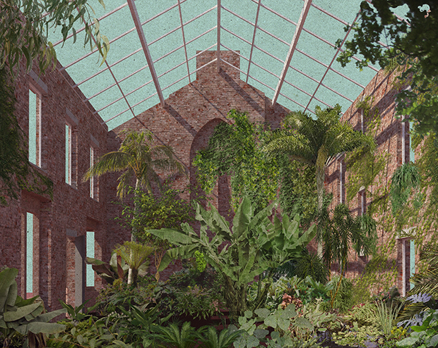 An indoor garden with roof. Part of Granby Four Streets by Assemble